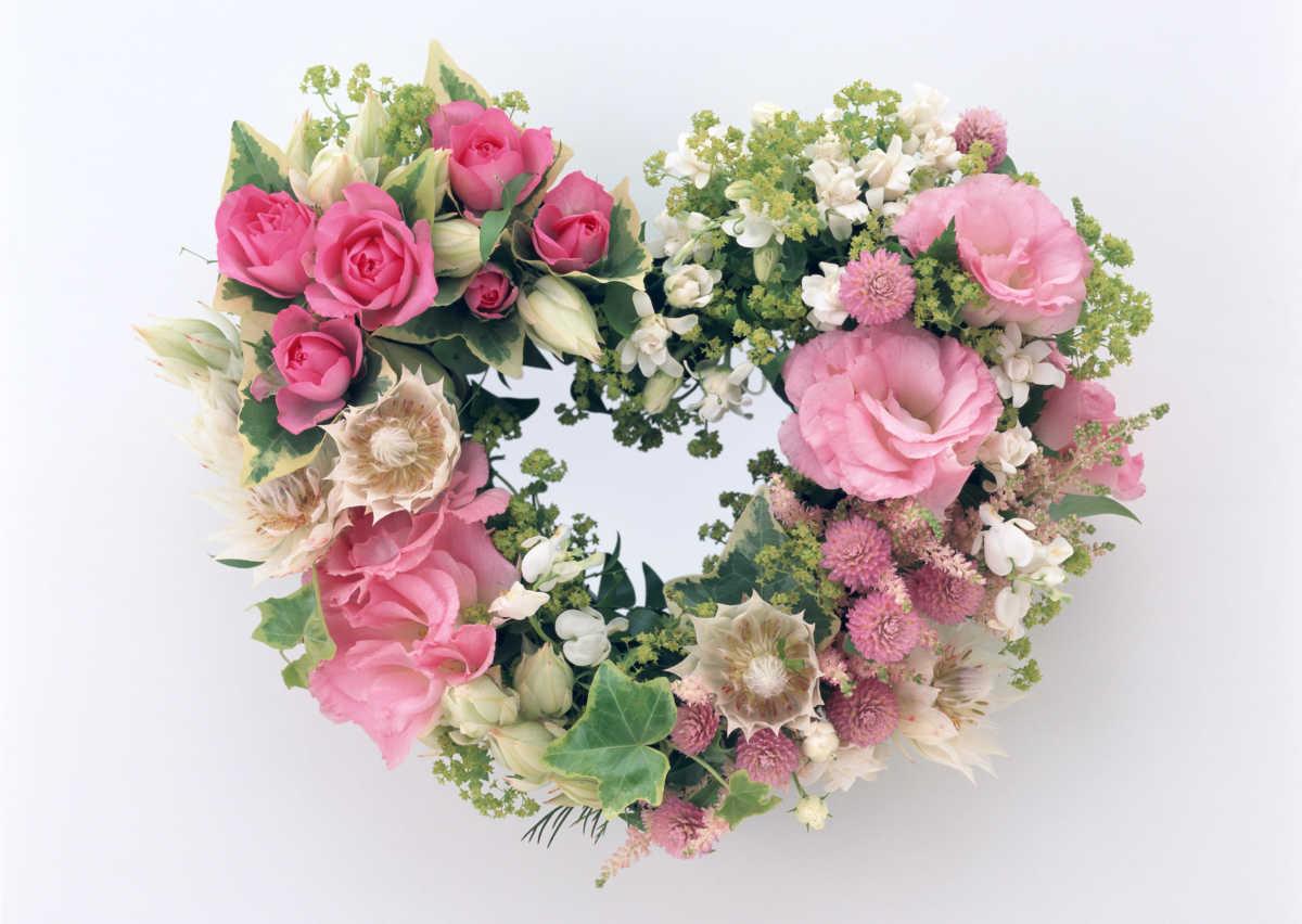 世界にひとつだけの花